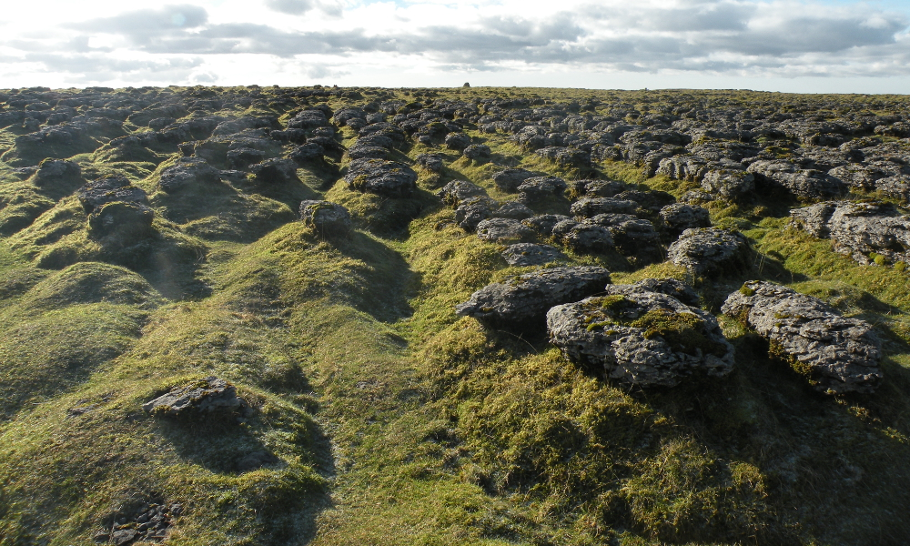 unusual limestone formation on Scales Moor